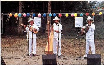 Veracruz musicians